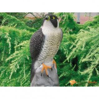 Ubbink Tierfigur Falke 40 cm - Vorschau 1