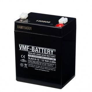 VMF AGM Batterie Standby und Zyklisch 12 V 2, 9 Ah SLA2.9-12