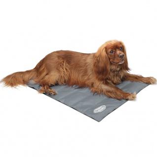 Scruffs & Tramps Kühlmatte für Hunde Grau Größe M 2717