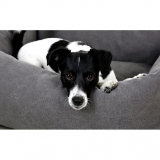 Kerbl Hundebett Lucca 70 x 60 cm Grau 80346 - Vorschau 2