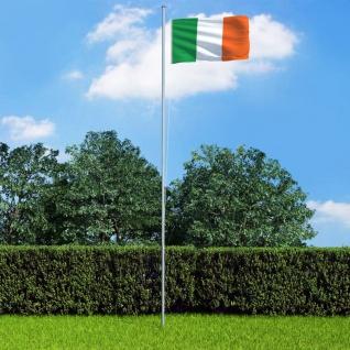 vidaXL Flagge Irlands und Mast Aluminium 6, 2 m