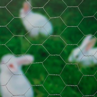 Nature Sechseckgeflecht 0, 5x10 m 25 mm Verzinkter Stahl - Vorschau 2