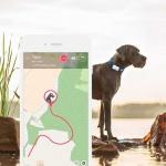Tractive GPS Haustier-Tracker XL Weiß TRAXL1