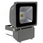 Strahler LED 80 W Fluter
