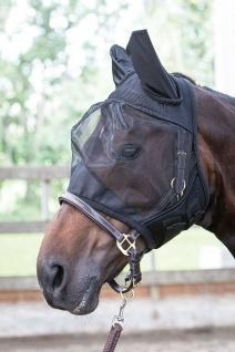 Harry's Horse Fliegenmaske Fliegennetz Gesichtsmaske Flyshield mit Ohren