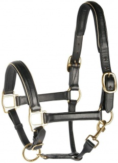 Harry's Horse Lederhalfter Halfter unterlegt schwarz mit Paspel silber oder gold
