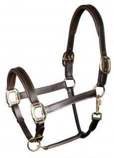Harry's Horse Luxus Lederhalfter Halfter Leder gepolstert 3fach verstellbar