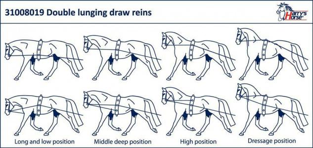 Harry's Horse Doppellonge schwarz Länge Gurt 14.8 m Softnylon - Vorschau 2