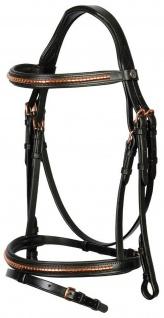 Harry's Horse Kombinierte Trense Rosegold Leder schwarz Beschläge rosegold