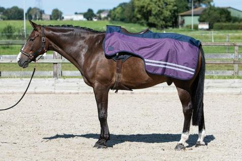Harry's Horse Ausreitdecke 0g Sattelausschnitt wasserd. reflektier. Winter 20/21