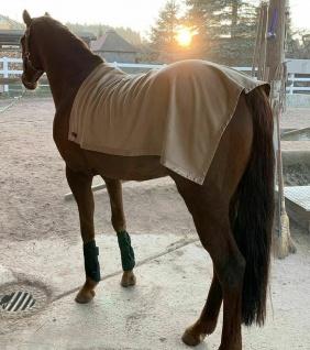 CeraTex Fleece Rückenwärmer für Pferde 100 % Keramikfasern grau und beige