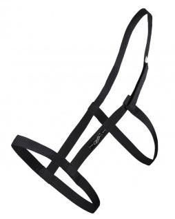 QHP Weidehalfter ohne Metallschnallen. Klettverschluss am Kopfstück schwarz