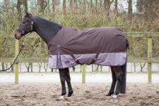 Harry's Horse Outdoordecke Thor 300 g Füllung 2 Tone Seal Brown Winter 2017/18