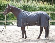Harry's Horse Regendecke Tiger 0g T/C-Futter 600D Polyester wasserd atmungsaktiv