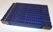 20x Zollstock | Gliedermaßstab | Schmiege | Meterstab | blau - 2m