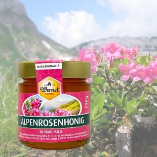 Honig Wernet Traditionsimker im Schwarzwald flüssiger Alpenrosenhonig im 250g Glas - Vorschau 2