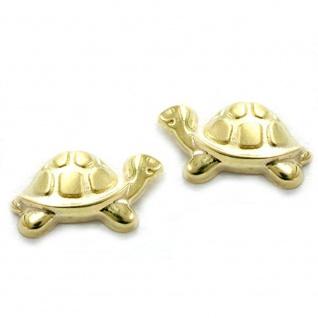 Stecker 10x6mm Schildkröte matt-glänzend 9Kt GOLD