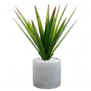 Kunstpflanze ALOE VERA, H. 48 cm, Übertopf aus Keramik