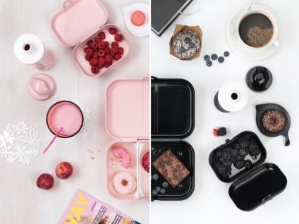 "Koziol Lunchbox ,, Pascal"" Brotdose Sandwichbox Brotdose Lebensmittelbehälter Frühstücksboxen Lunchboxen - Vorschau 2"