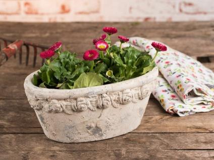 Pflanztopf ROSES 26 cm oval Zement Beige Blumentopf Rosen Muster Vintage Design