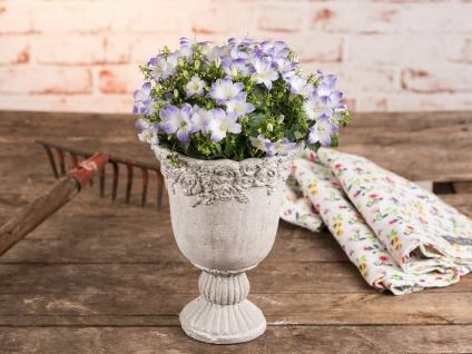 Pflanztopf Amphore ROSES 20 cm Zement Beige Blumentopf Rosen Vintage Design