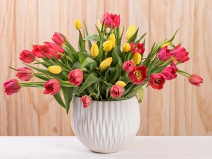 Vase FRIEDA weiß Keramik 17 cm Blumenvase Blumentopf Übertopf Deko Pflanztopf
