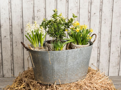 Pflanzen Wanne MAJA 60 cm Zink Optik Vintage Design Metall Pflanztopf Blumentopf
