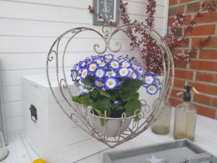 Pflanztopf Hänger HERZ 40 cm Blumenampel Blumentopf Hänger Vintage Metall Ampel