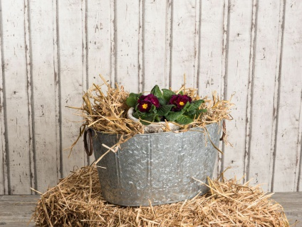 Pflanzen Wanne MAJA 50 cm Zink Optik Vintage Design Metall Pflanztopf Blumentopf