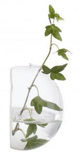 Affari Wandvase KLING Glas Blumenvase Halbrund 9 cm Vase Wand Montage