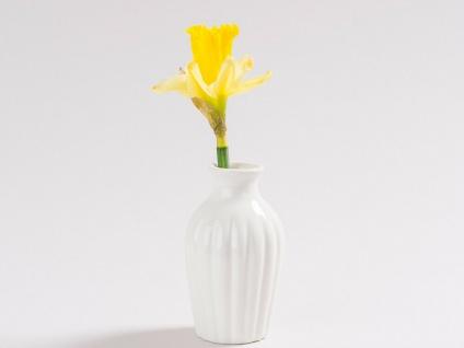 Vase ADA Weiß Blumenvase Keramik 10 cm