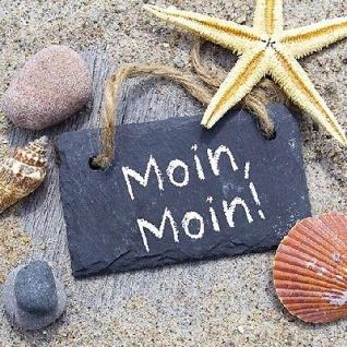 Ambiente Servietten MOIN MOIN Strand Steine Muscheln Seestern Schild 20 St 33x33