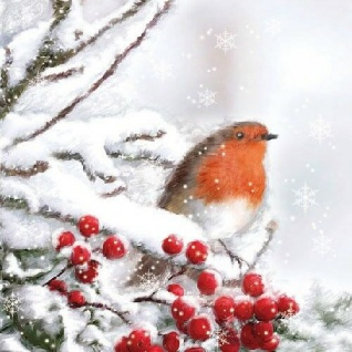 Ambiente Servietten ROBIN IN SNOW Rotkehlchen Schnee Weihnachten Winter 20 S 33x
