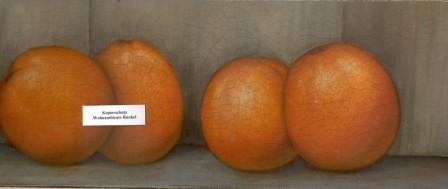 WOHNAMBIENTE Oleographie Art.-Nr.: 2561 Maße: 32 x 13 x 2 cm (BxHxT) sogenanntes Küchenbild, diese Bilder werden ungerahmt aufgehängt.