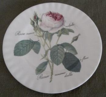 WOHNAMBIENTE Porzellan, Geschirr Art.-Nr.: 903 Dessertteller, auch Kuchenteller Maße: h= 20, 5 cm.