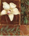 WOHNAMBIENTE Oleographie Art.-Nr.: 42603 Maße: 40 x 49 cm (BxH).