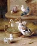 WOHNAMBIENTE Oleographie Art.-Nr.: 2767 Maße: 28 x 35 cm (BxH).