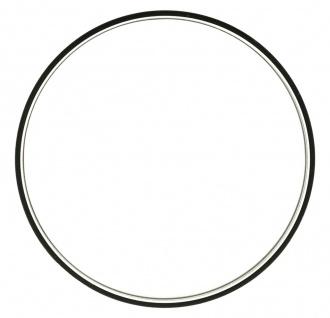 Casio Ersatzglas Uhrenglas Mineralglas Rund mit Dichtungsring WV-200 94801064