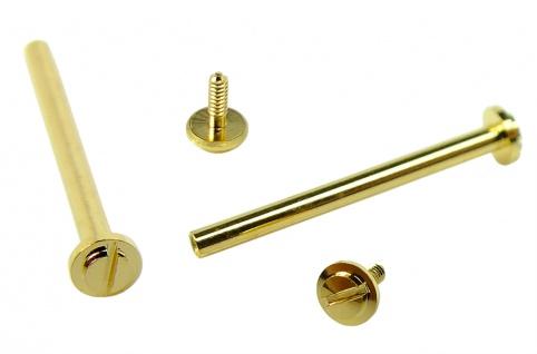 Minott Schrauben   2x Ersatzschrauben Ø 1, 35mm aus Edelstahl für Mittelbänder gelbgoldfarben 32760