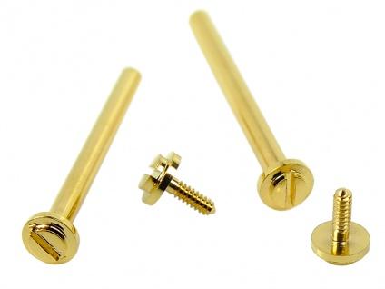 Minott Schrauben 2x Ersatzschrauben Ø 1, 45mm Edelstahl für Mittelbänder gelbgoldfarben 32762
