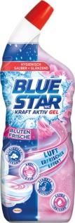 Blue Star WC Kraft Aktiv Gel Blütenfrische, WC-Gel