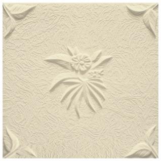 1 qm Deckenplatten Polystyrolplatten Stuck Decke Dekor Platten 50x50cm Natura - Vorschau 5