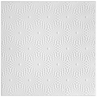 2 qm   Deckenplatten   XPS   formfest   Hexim   50x50cm   Nr.96
