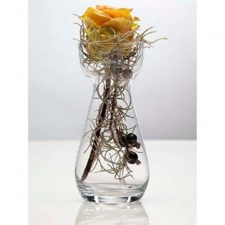 6er SET Glasvasen HYACINTH H. 17cm D. 7cm transparent Glas klar Sandra Rich