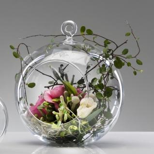 6er SET Glaskugel mit Öffnung, Hängevasen KUGEL Glas klar H. 16, 5cm Sandra Rich