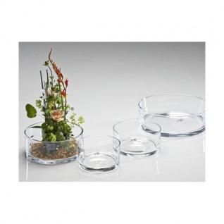 Glasschale, Dekoschale AUTOMATIC H. 7, 5cm D. 16cm rund klar Sandra Rich