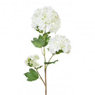 67cm GASPER Knospen weiß H Künstlicher Schneeballzweig mit 2 Blüten
