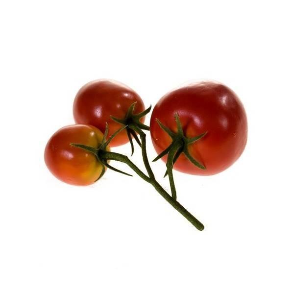 künstliche Paprika 9cm rot Emerald Gemüse