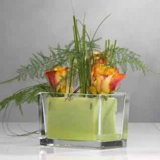 6er SET Deko Schalen, Jardinieren rechteckig H. 10cm 15, 5x8cm Glas Sandra Rich