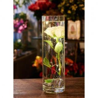 LED Beleuchtung für Blumenvasen, wasserdicht, 3x4 Lichter, 32x3cm, SIRIUS
